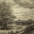 Wickliffe Landscape  by Debi Frueh