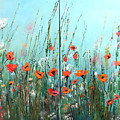 Wild Flowers by Dorothy Maier