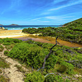Wilsons Promontory National Park by Benny Marty