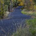 Winding Road by Idaho Scenic Images Linda Lantzy