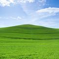 Windows Xp by Kunal Mehra