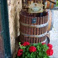 Wine And Geraniums by Debbi Granruth