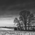 Winter Fields by Pixabay