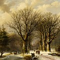 Winter Scene In Reichswald by MotionAge Designs