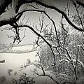 Winter Scene In Switzerland by Susanne Van Hulst