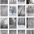 Winter Time by Gabriela Insuratelu