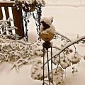 Winterland 2 by Elizabeth Tillar