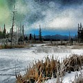 Winters Marsh by Roland Stanke