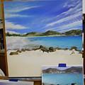 Wip- Orient Beach by Cindy D Chinn