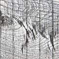 Wood Detail by Tom Gowanlock