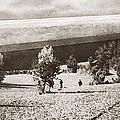 World War I: Zeppelin by Granger