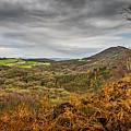 Wrekin View by Mark Llewellyn