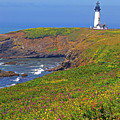 Yaquina Head Lighthouse by Rich Walter