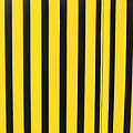 Yellow And Black Stripes by Robert Hamm