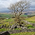 Yorkshire Dales Landscape by Martyn Arnold