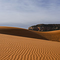 Coral Pink Sand Dunes by Yefim Bam