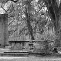 Old Sheldon Church by Frank Conrad