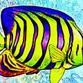 Underwater. Fish. by Elena Kosvincheva