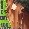 100 Mile Horse by Michelle Hayden-Marsan