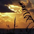 100_0103 Sunrise by Stephen Ham