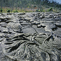 100964 Lava Flow Patterns Hi by Ed Cooper Photography