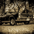 Classic Cars by Mickie Bettez
