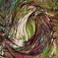 11-03-11 by Gwyn Newcombe