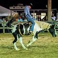 Bronco Riding by Glenn Matthews