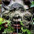 Public Fountain In Palma Majorca Spain by Richard Rosenshein