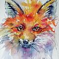 Red Fox by Kovacs Anna Brigitta