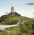 Stunning Summer Landscape Image Of Lighthouse On End Of Headland by Matthew Gibson