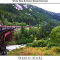 White Pass And Yukon Route Railroad by William Jones