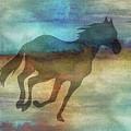11037 Horse by Pamela Williams
