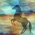 11040 Horse by Pamela Williams