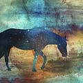 11042 Horse by Pamela Williams