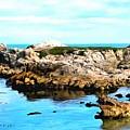 West Coast Seascape 2 by Barbara Snyder