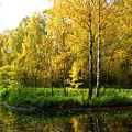 Autumn Landscape by Irina Afonskaya