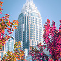 Aututmn Season In Charlotte North Carolina by Alex Grichenko