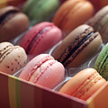 French Macaron Rainbow by Lisa Board