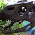 Centro De Investigaciones Paleontologicas by Carol Ailles