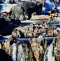 Great Falls Of The Potomac by Margie Wildblood