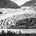 Panoramic View Of Mendenhall Glacier Juneau Alaska by Alex Grichenko