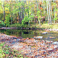 Pennsylvania Stream In Autumn by A Gurmankin