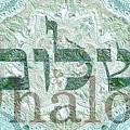 Shalom, Peace by Sandrine Kespi