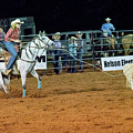 Steer Roping by Glenn Matthews