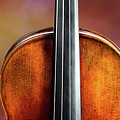 134 .1841 Violin By Jean Baptiste Vuillaume by M K Miller