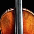 135 .1841 Violin By Jean Baptiste Vuillaume by M K Miller