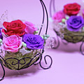A Gift Of Preservrd Flower And Clay Flower Arrangement, Colorful by Eiko Tsuchiya