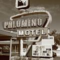 Route 66 - Tucumcari New Mexico by Frank Romeo