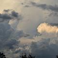 SKY by Erin Schuettler